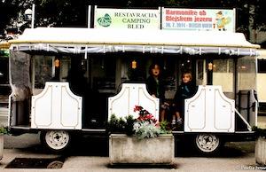 bled_avec_des_enfants_train_touristique