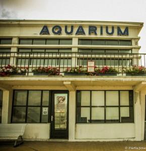 Aquarium d'Ostende