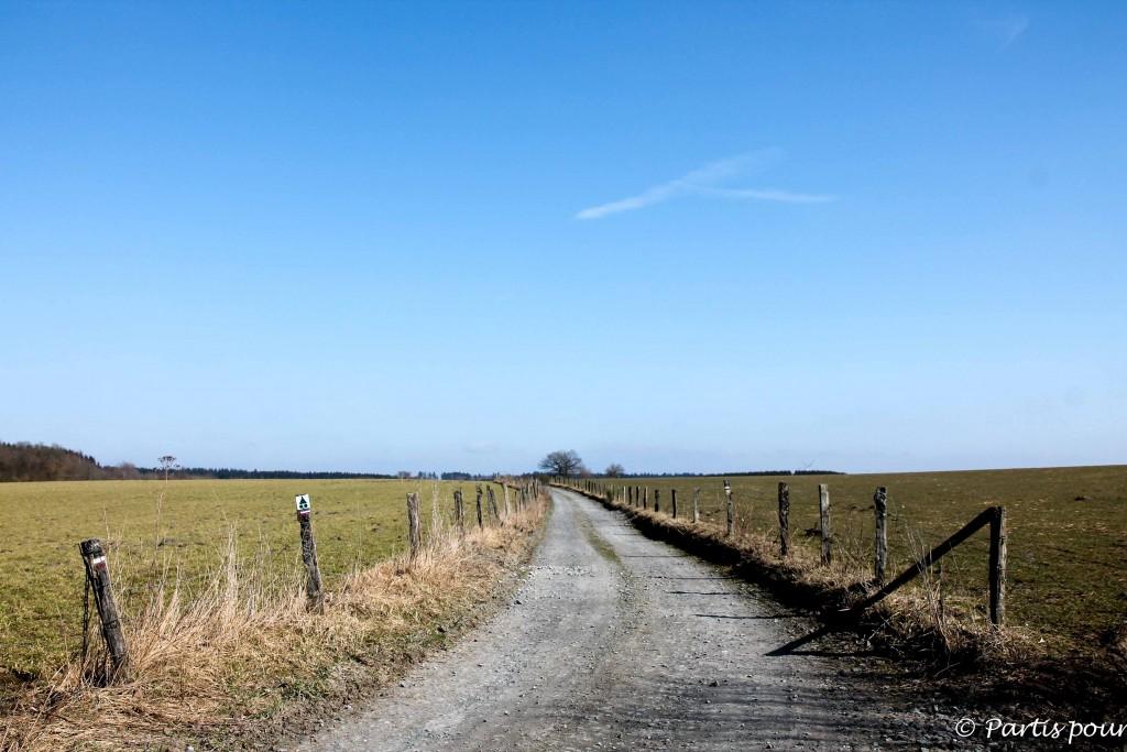 Petits plaisirs de mars Rando Recogne Sur le Chemin des Pèlerins