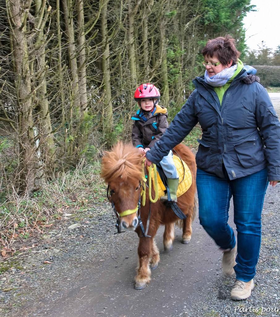 Promenade à poneys avec la Ferme équestre de Béemont à Warzée