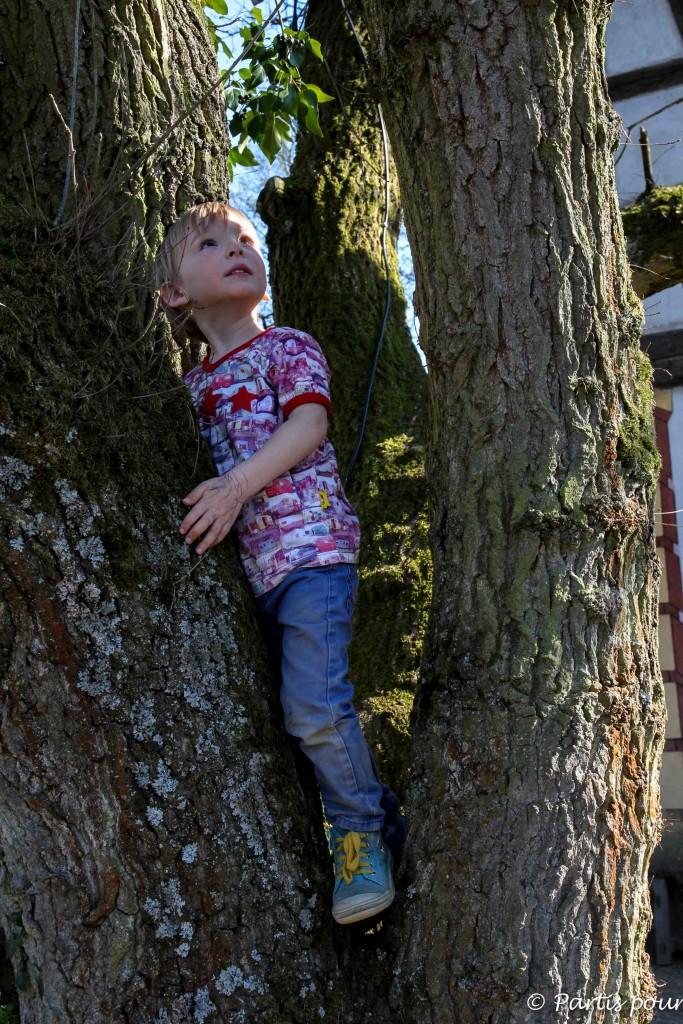 A l'écomusée d'Alsace, Sacha grimpe dans les arbres - L'Alsace en famille