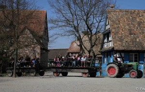 alsace_en_famille_ecomusee_tracteur