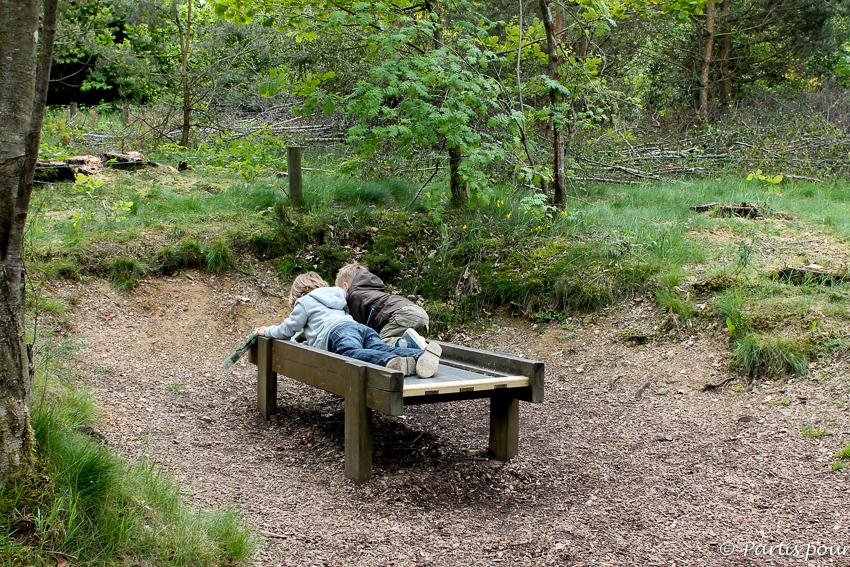 Parc Chlorophylle Petits Plaisirs mai