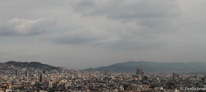 Vue sur Barcelone depuis les terrasses du Musée national d'Art de Catalogne Barcelone TBEX