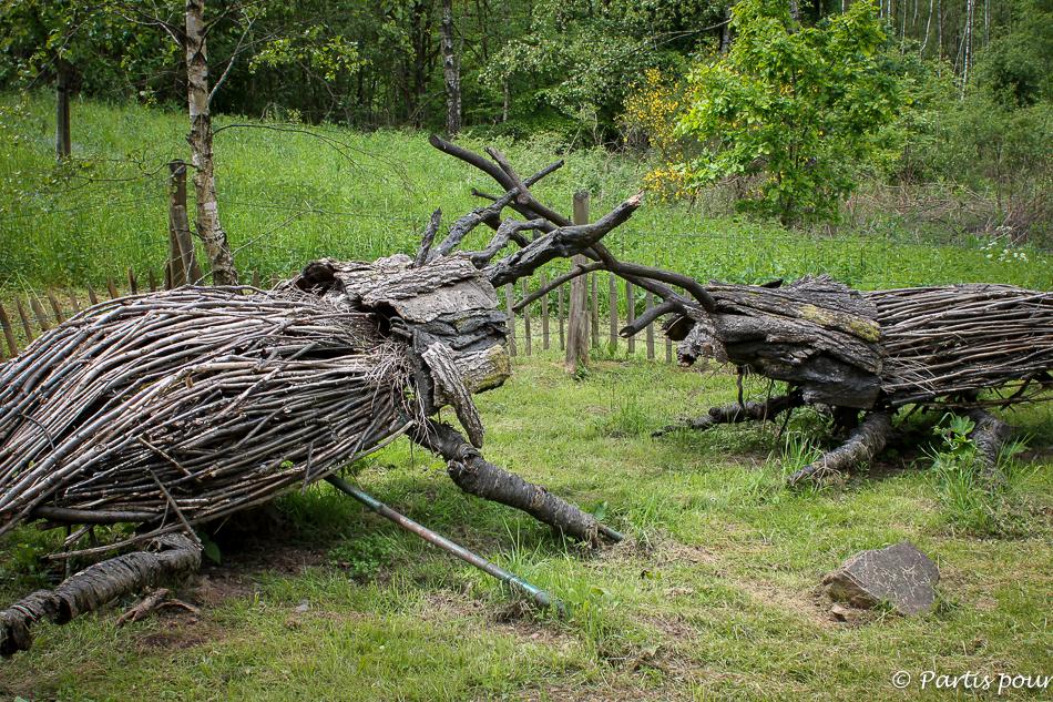 Parc Chlorophylle, Dochamps. Activités autour de Durbuy