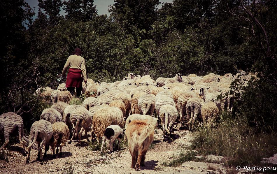 Bergère de Podvelez, Bosnie-Herzégovine. Cinq jours sur les routes de l'Herzégovine