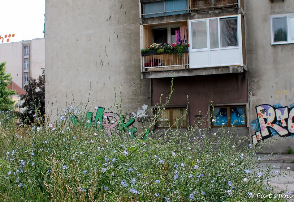 Trois semaines à Sarajevo dans le quartier Malta