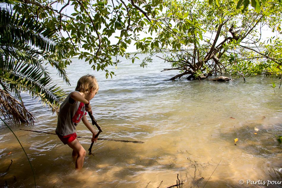 Dans la mangrove et la forêt autour de Cachouane. Itinéraire d'un voyage au Sénégal
