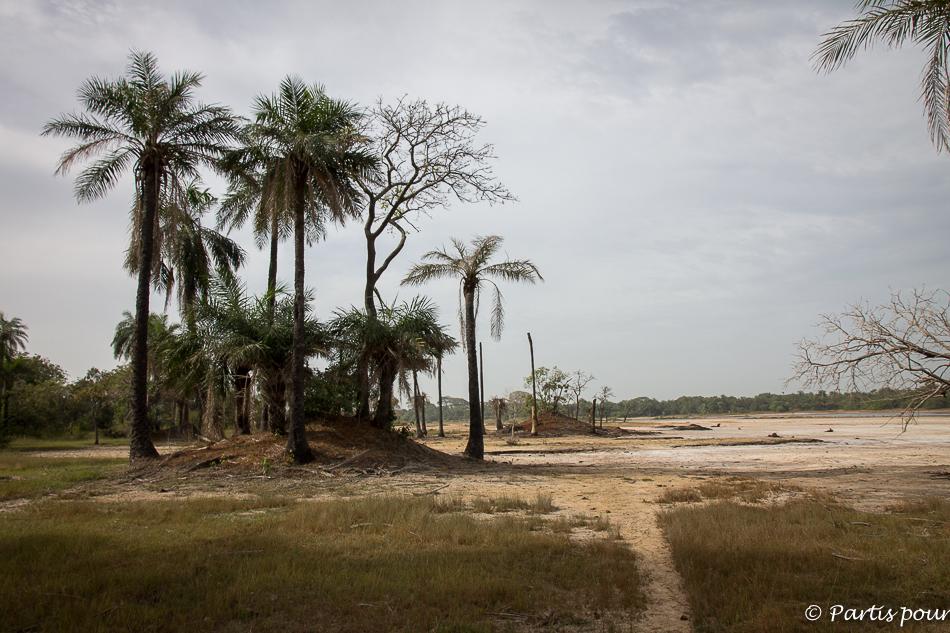 En allant vers Niafourang. Itinéraire d'un voyage au Sénégal