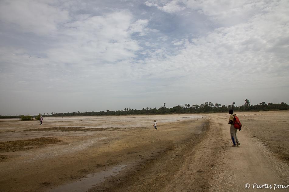 Ici, il y avait la mangrove. Elle a disparu. Alors, on replante pour la faire revivre... Du côté de Kabadio. Itinéraire d'un voyage au Sénégal