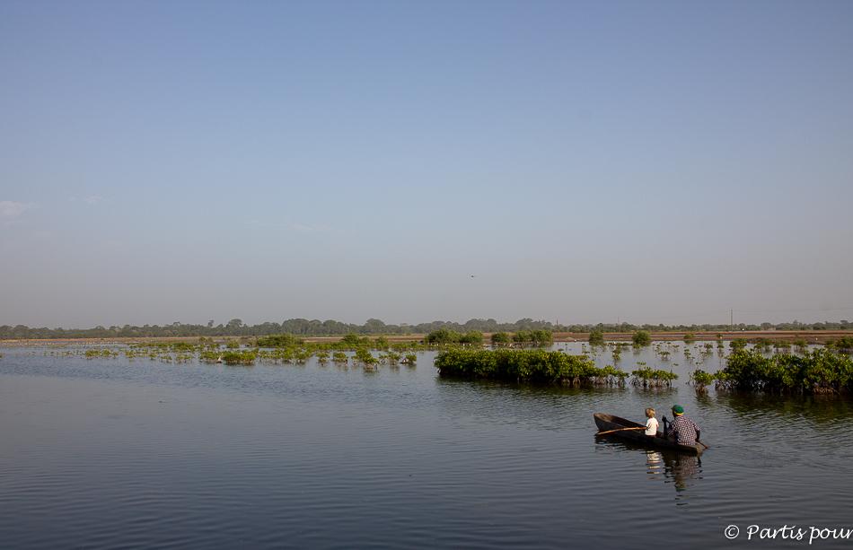 Tour en pirogue dans les bolongs de Koubalan. Itinéraire d'un voyage au Sénégal