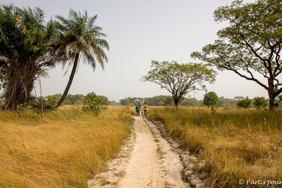 Avant d'arriver à la Pointe Saint-George, il faut d'abord traverser la savane. Itinéraire d'un voyage au Sénégal