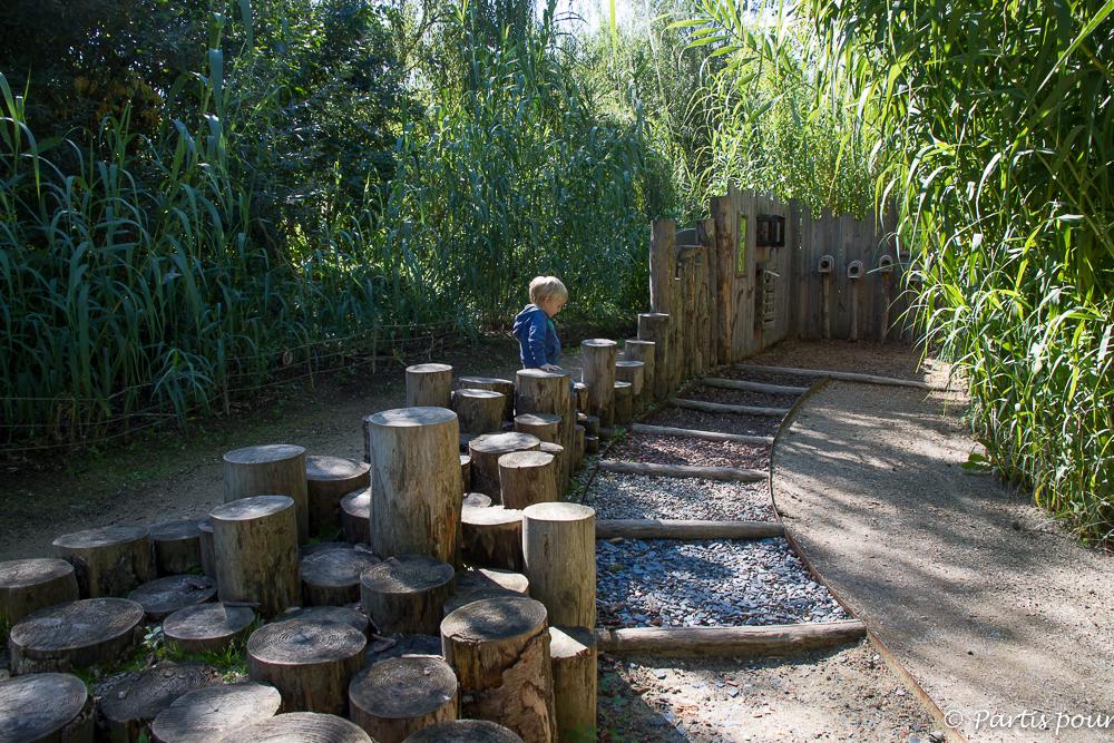 Centre de réintroduction d'Hunawihr. Que faire avec un enfant en Alsace ?
