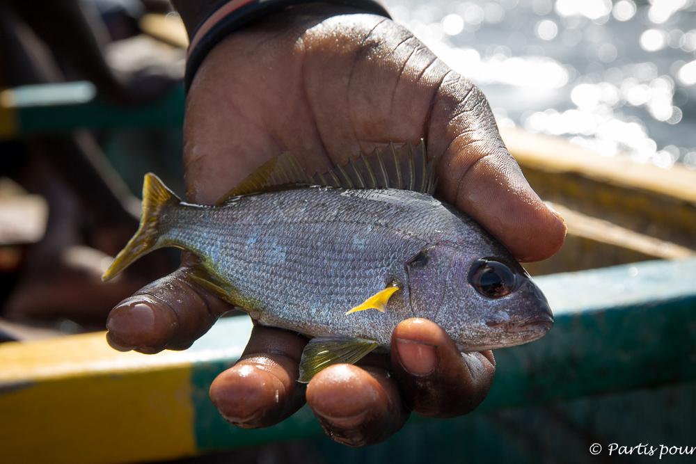 Pêche en pirogue traditionnelle. Dakar avec un enfant