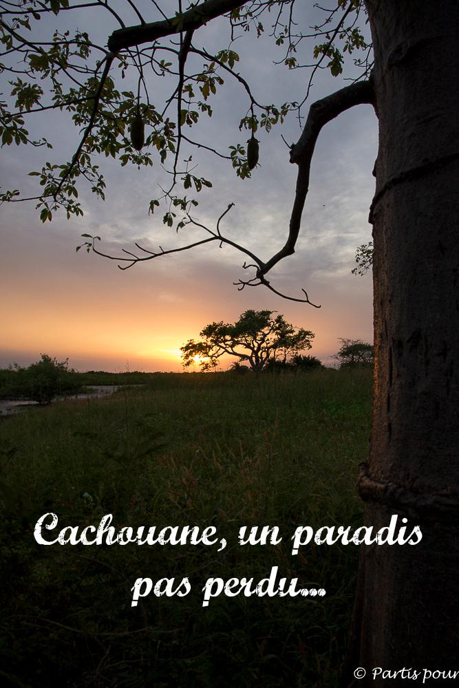 cachouane_casamance_paradis