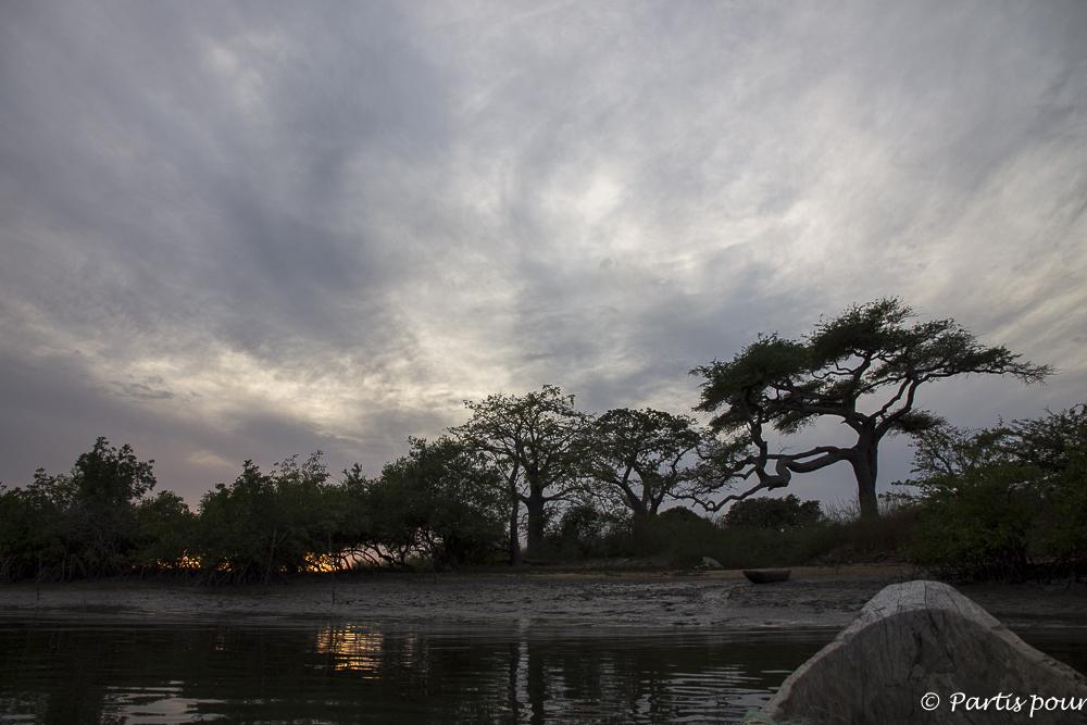 Revenir au coucher du soleil à Cachouane, Casamance, Sénégal