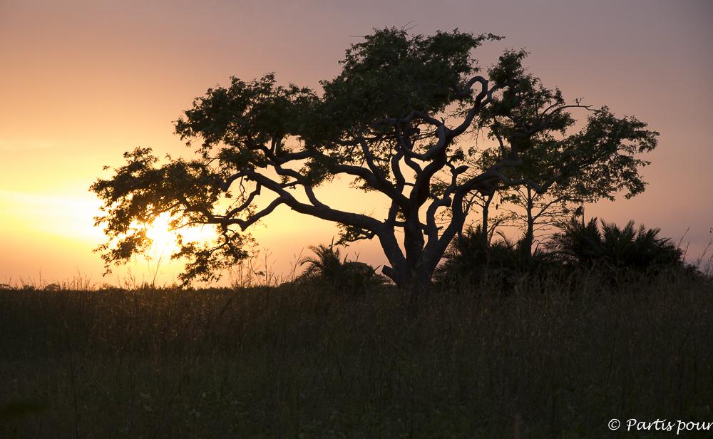 Coucher de soleil sur Cachouane, Casamance, Sénégal