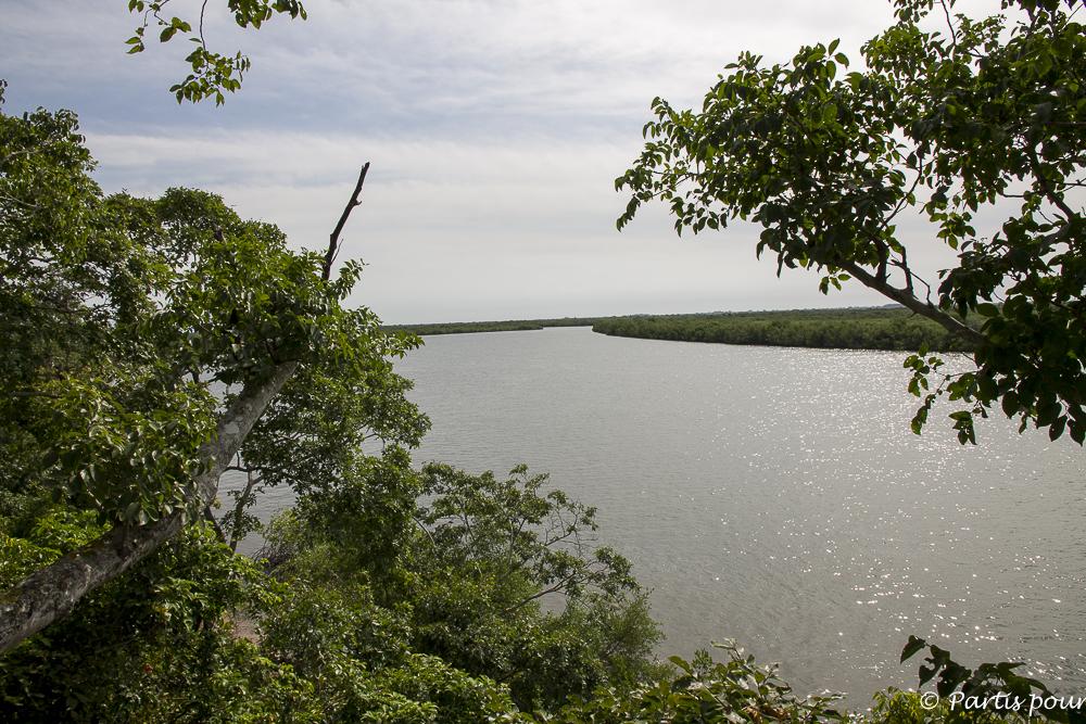 Faire le tour des îles du Sud et savourer des huîtres grillées sur l'île Dis-moi-tout. Vue sur le fleuve et la mangrove. Casamance. Sénégal