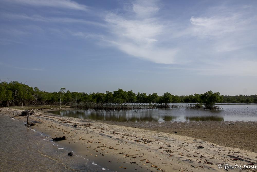 Sur Ehidj, l'île des Féticheurs, Casamance, Sénégal