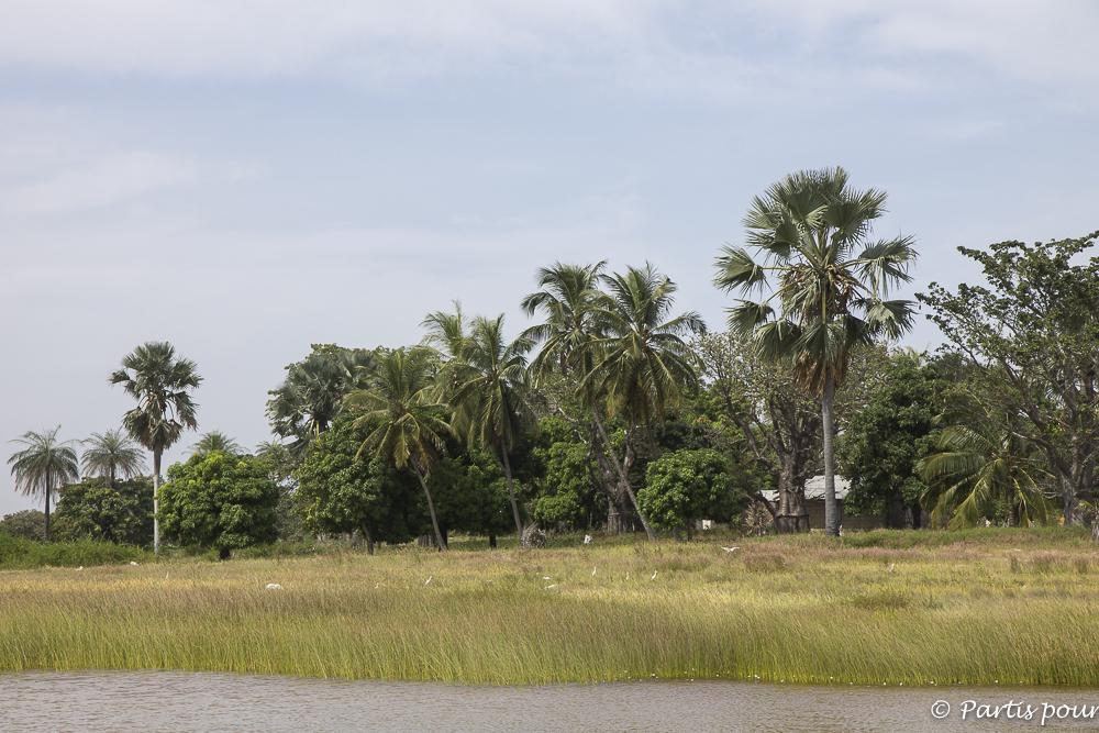 Ile de Wendaye, Casamance, Sénégal