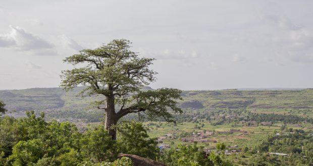 Billet de Bamako #3 : Bamako comme une retraite. Se poser un temps et reprendre le cours de sa vie à Bamako, Mali.