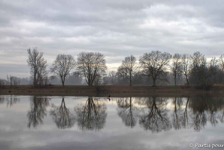 De l'aviron sur les bords de l'Elbe, Litomerice, République tchèque