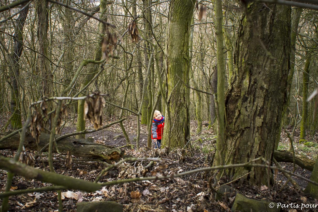 Jouons dans les bois. Rando sur une des collines qui entoure Litomerice, République tchèque