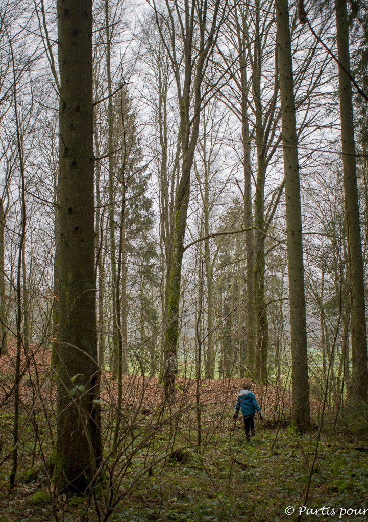 Du côté de Lavacherie, Province du Luxembourg, Belgique. Bilan d'une année de vie nomade
