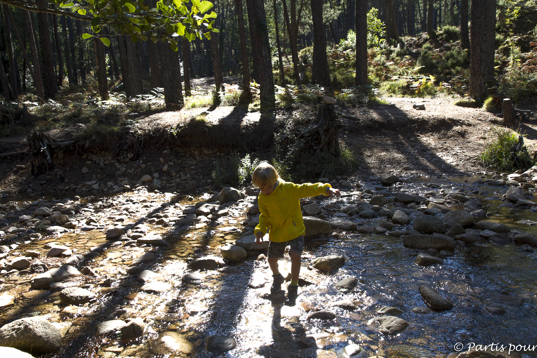 Balade dans la forêt en Corse, France. Bilan vie nomade