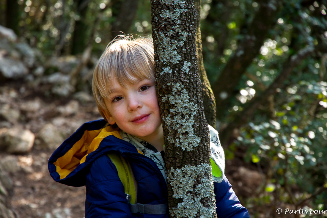 Le contact avec la nature. Remercier les arbres. Ressentir leur énergie, leur présence. Randonnées dans le Clermontais