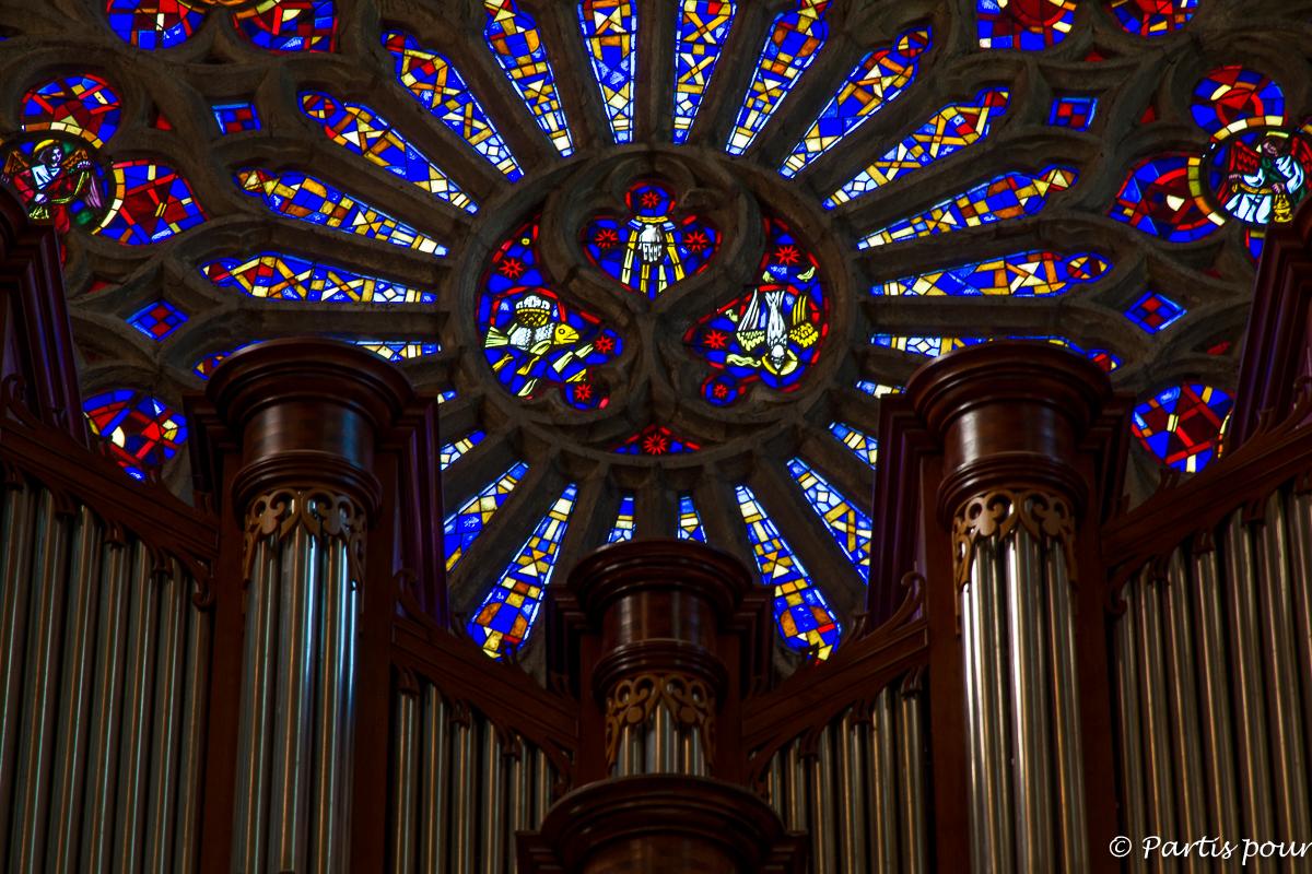 Détails de la rosace de l'Eglise Saint-Paul de Clermont-l'Hérault. Randonnées dans le Clermontais