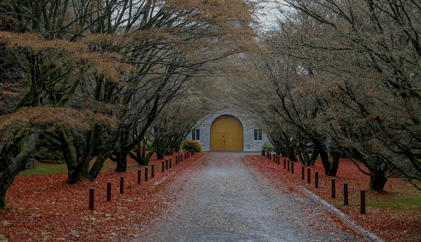 La transcendance... Abbaye de Scourmont, Belgique. Chronique d'un départ, Joël et Laurence Schuermans