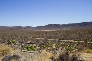 Dans le désert du Karoo, en Afrique du Sud