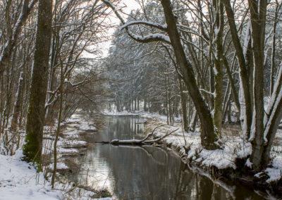 Randonnée hivernale du côté de Lavacherie, Belgique