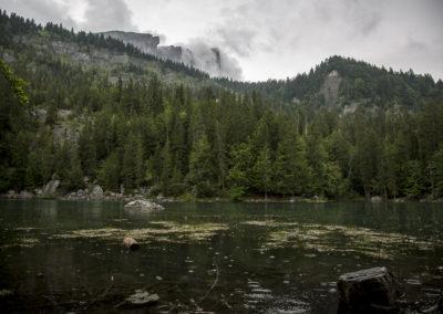Le Lac Vert sous la pluie, Plaine-Joux, France