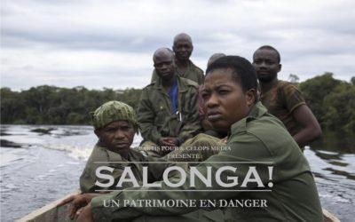 Salonga, à la rencontre des protecteurs de la forêt primaire