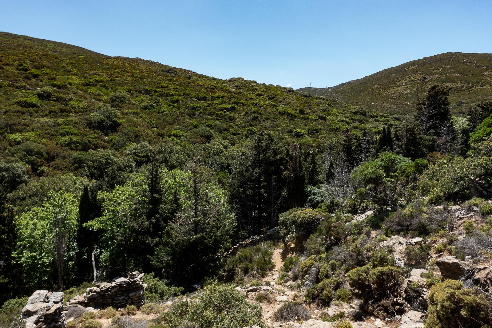 Itinéraire d'un voyages dans les Cyclades : Randonnée à Andros. Partis pour les Cyclades