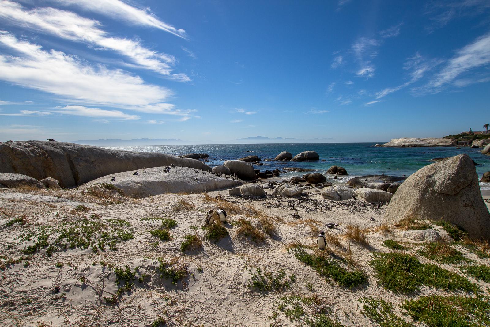 Boulders Beach, Simon's Town, Afrique du Sud - Partis pour