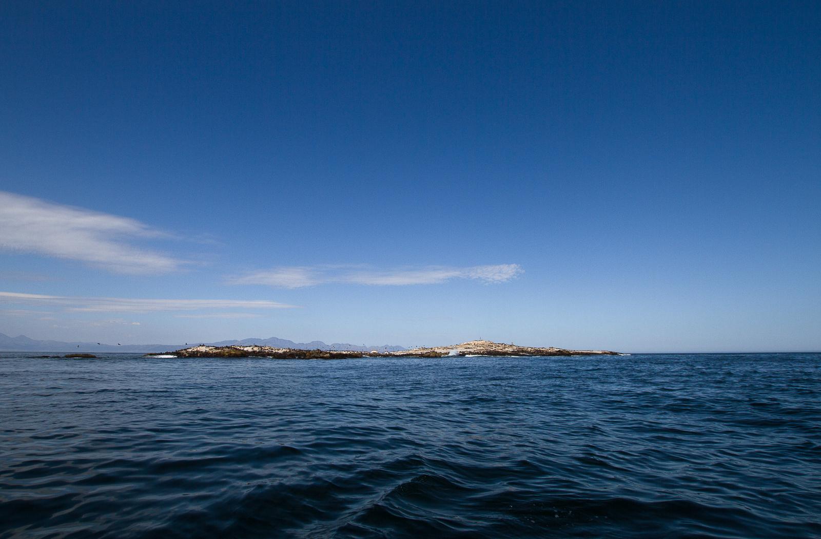 Seal Island, Simon's Town, Afrique du Sud - Partis Pour